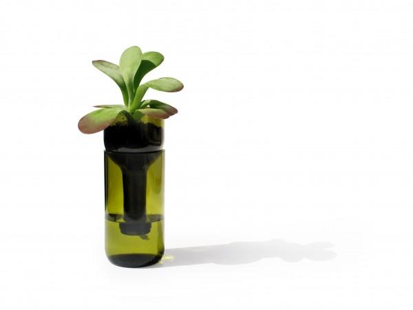 Blumengefäß selbstbewässernd - self watering bottle