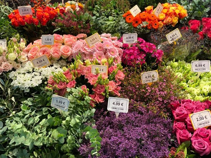 13_Blumen